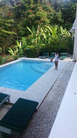 Tobago's Hibiscus Golf Villas & Apartments: Pool area.