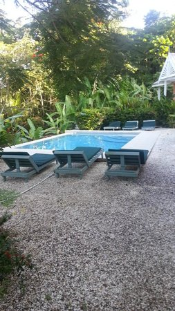 Tobago's Hibiscus Golf Villas & Apartments : Pool area