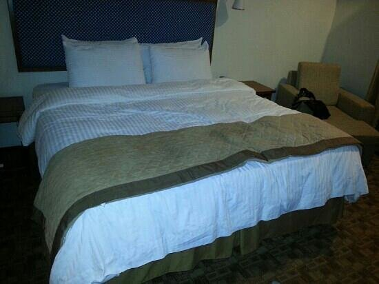Wyndham Garden Hotel Baronne Plaza : comfortable Bed. And clean