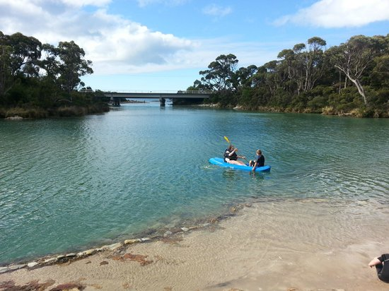 Crayfish Creek, Avustralya: Kayaking on the creek