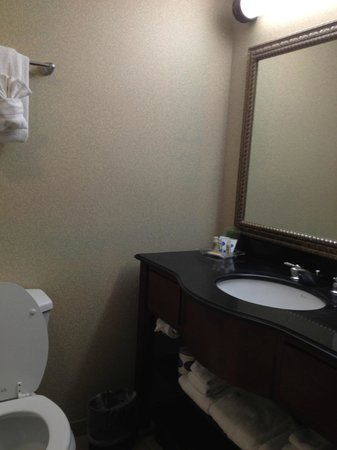 Holiday Inn Hotel & Suites Aggieland: Vanity