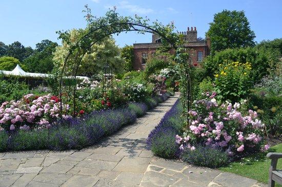 Capel Manor Gardens: Rose garden