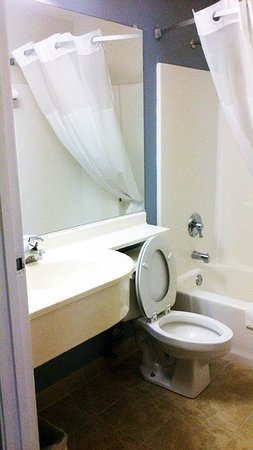 Microtel Inn & Suites by Wyndham Sioux Falls: Bathroom by Jets Like Taxis