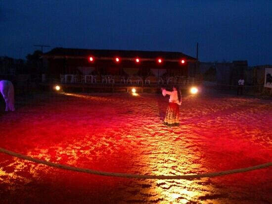 Cabaret Equestre des Dunes : jeux de lumière