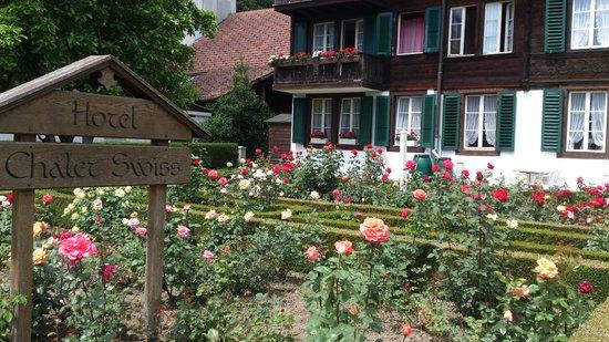 Hotel Chalet Swiss - summertime: roses