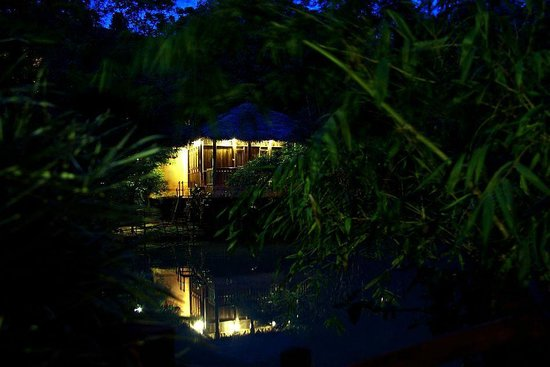 Banasura Hill Resort: Log Hut/Suites across the pond