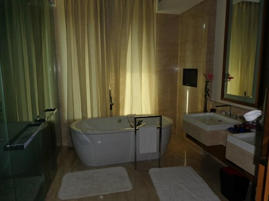 The Oberoi, Gurgaon : large nicely styled bathroom