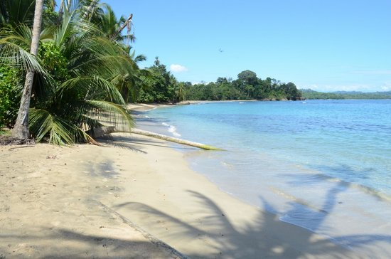 Le Colibri Rouge: plage Cahuita