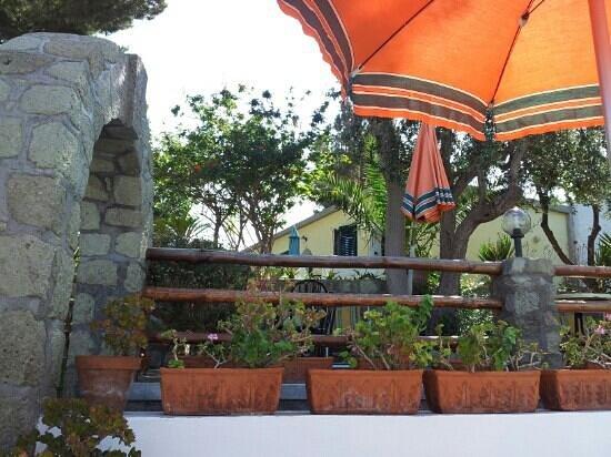 Hotel Villa Hibiscus: Dalla piscina...