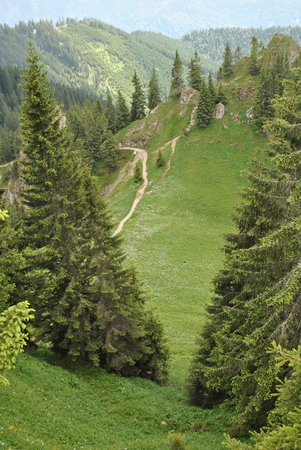 Laber : Many trail options from the top