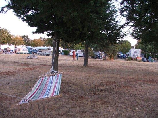 CampingIN Park Umag : mia piazzola