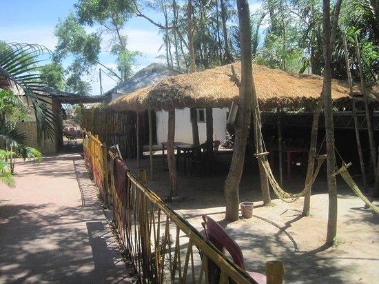 Tajpur Nature Camp: Leisure.........