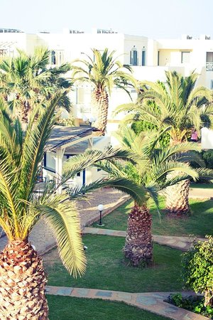 Europa Beach Hotel : The hotel grounds