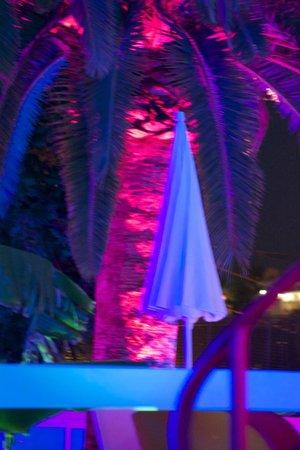 Casa Alexio: At Night