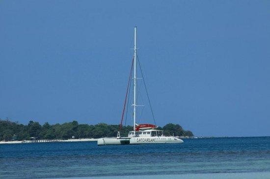 Catchasam Catamaran Charter
