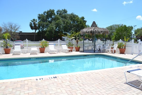 Americas Best Value Inn-Bradenton/Sarasota: Although not a heated pool- it is clean and inviting