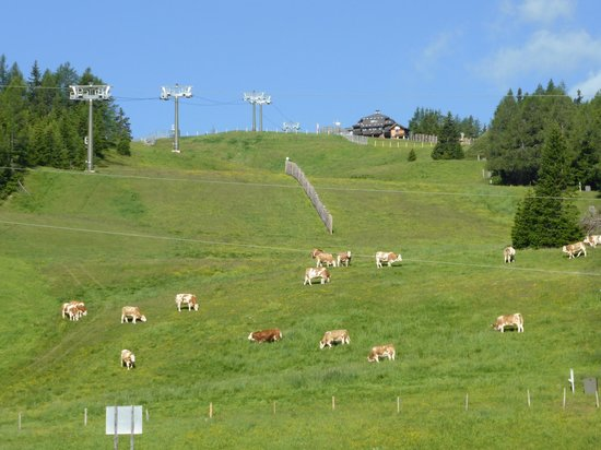 Falkensteiner Hotel Cristallo: Ski slopes during the Winter, grassland during the Summer