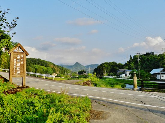 Green Park Yoshiime