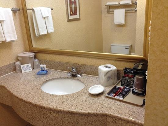 Fairfield Inn & Suites Waco North : bath