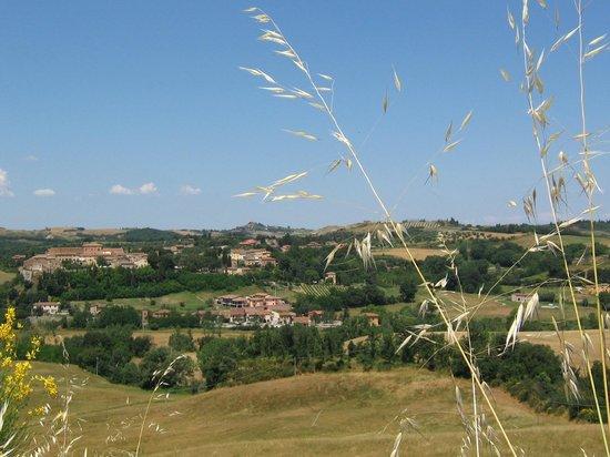 Hotel Primavera : Tuscan scenery