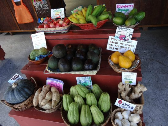 South Kona Fruit Stand: Delicious, unusual fruit selection