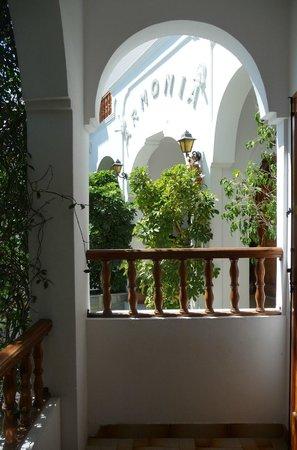 Armonia Hotel: Ma terrasse donnant sur l'entrée