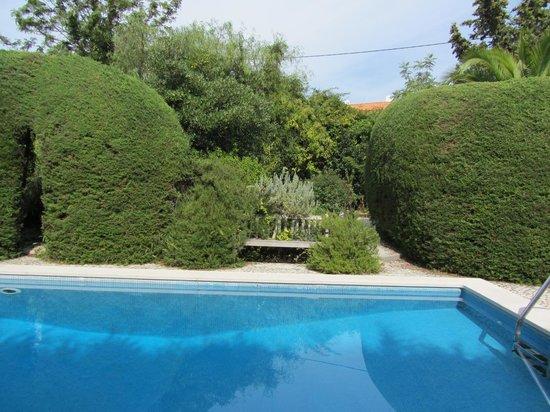 CASA DA TERRINA: pool
