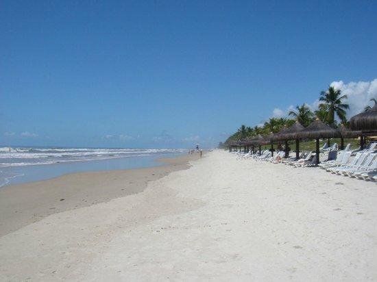 Ilha de Comandatuba, BA: Olha que maravilha, praia deserta!