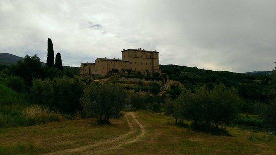 Castello di Potentino: View from vineyard