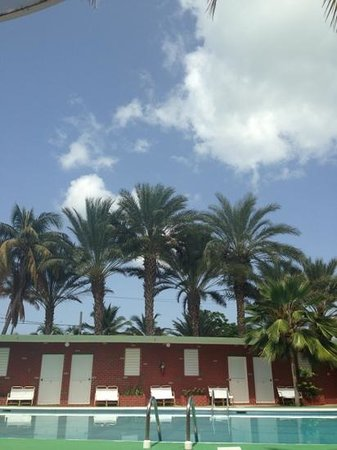 Guayama, Puerto Rico: Rooms by the pool