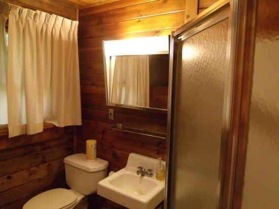Gifford Pinchot State Park: Bathroom