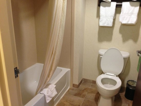 Hampton Inn & Suites Dallas-Arlington-South : Bathroom