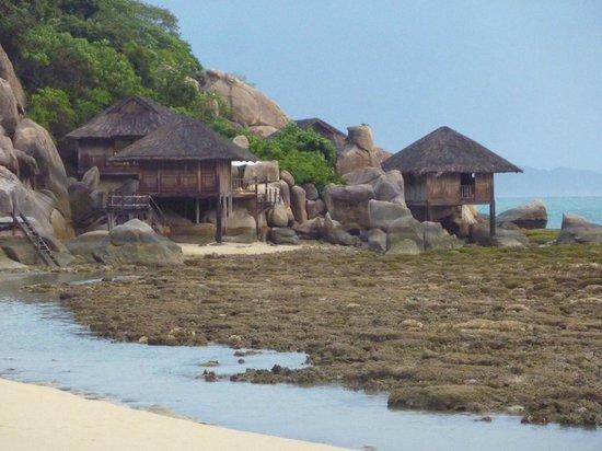 Six Senses Ninh Van Bay: кораллы, отлив