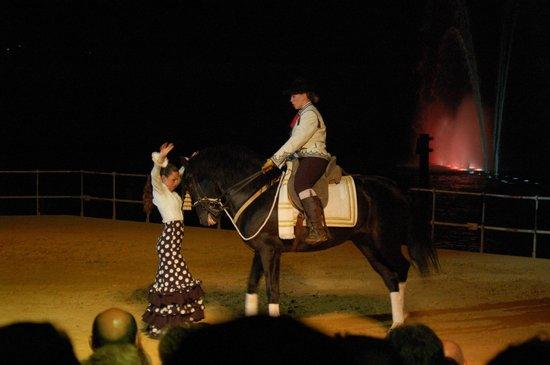 Parque Isla Mágica: El arte de andalucia a caballo de Carmelo Cuevas