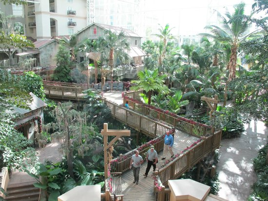 Gaylord Palms Resort & Convention Center: View of atrium
