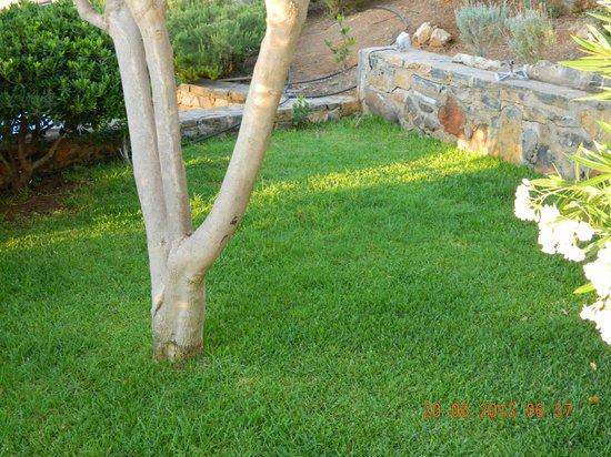 Elounda Vista Villas : Excellent green areas!