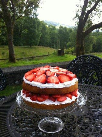 Cote How Organic Tea Room: Wimbledon time! Cake with a view!
