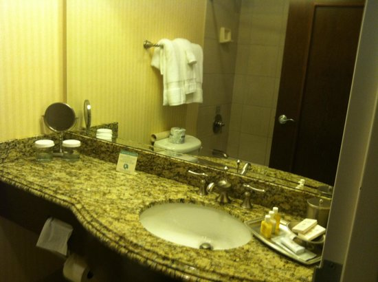The Blennerhassett Hotel: Bathroom vanity