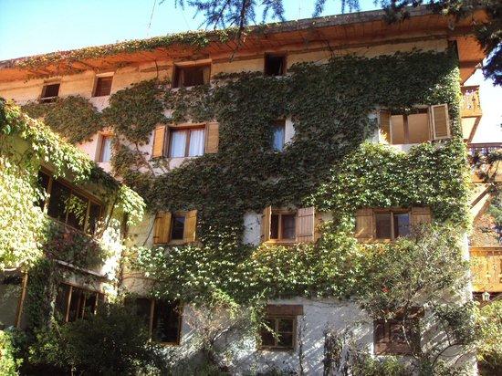 Hotel Las Cascadas : una de las vistas