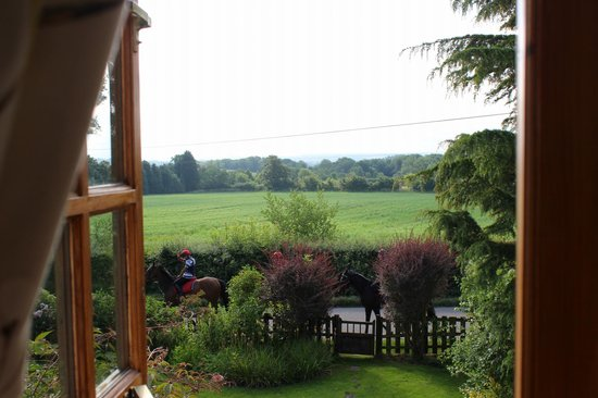 Larkrise Cottage : View from our window at Larkrise