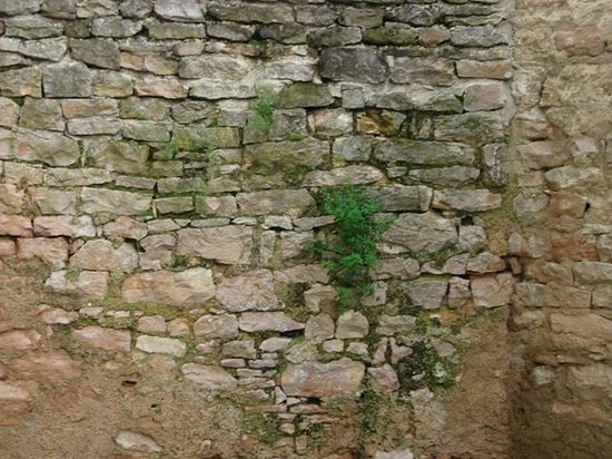 Le Manoir Equivocal : Pretty brick work