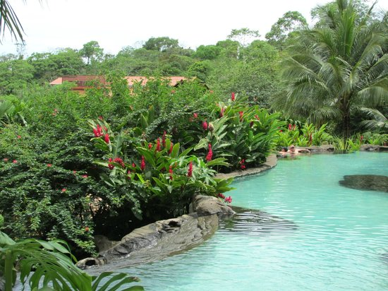 The Springs Resort and Spa : beautiful grounds and pools