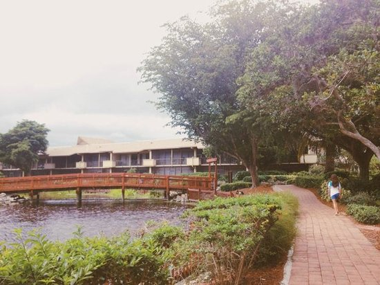 The grounds of Park Shore Resort