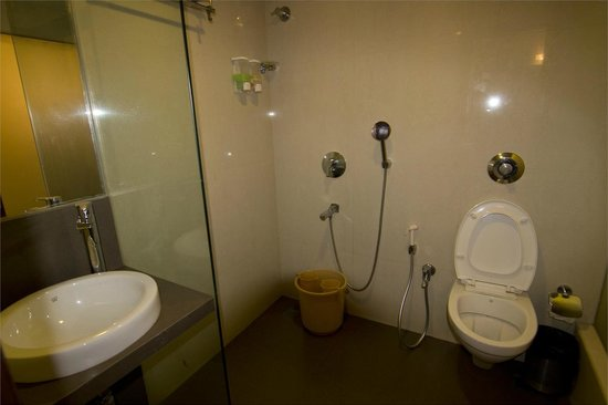 Hotel Rajhans: bathroom