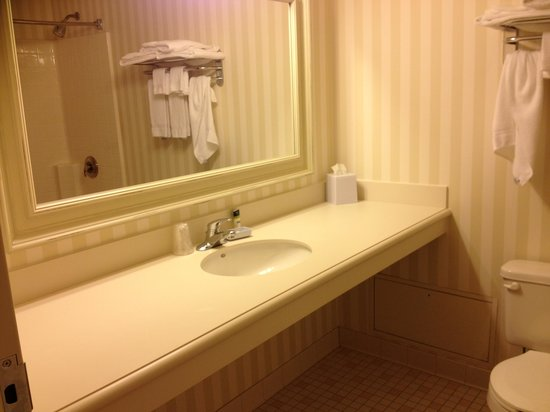 The Four Points by Sheraton Norwood Hotel & Conference Center: Simple bathroom but clean, spacious and well lit