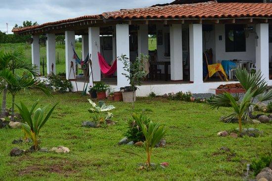 Hostal Villa Libera: la terazza