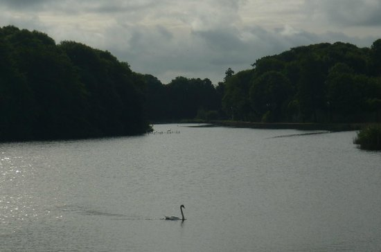 Old Kings Arms Hotel: River Cleddau in Pembroke