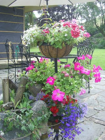 School House Cottage: more other colourful flowers around the pretty garden