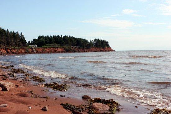 Dawson's Seaside Getaway: Beach