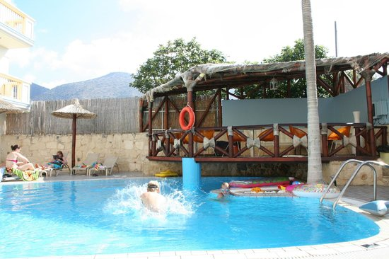 Michalis Apartments : Pool area